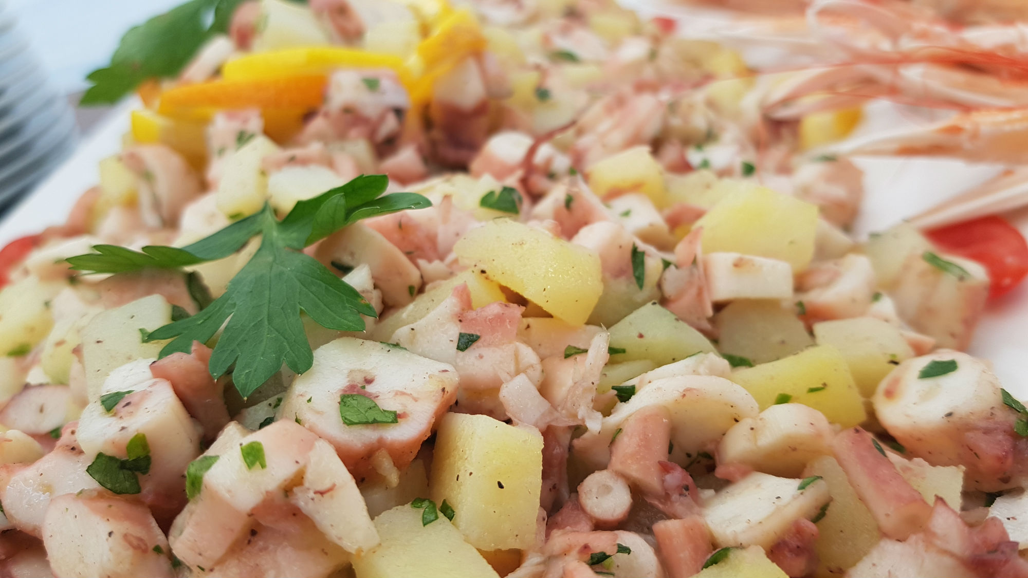 Buratti catering insala di polipo